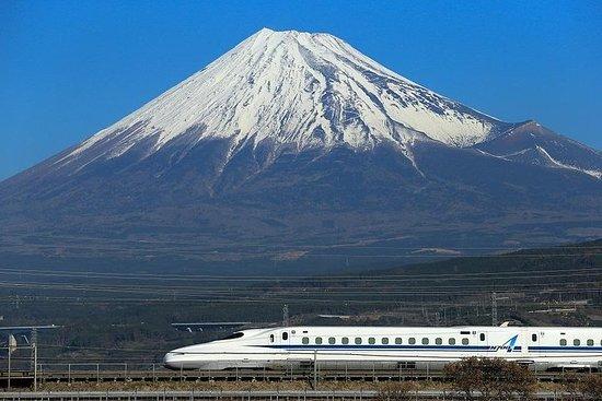3-daagse Kyoto en Nara Rail Tour met ...