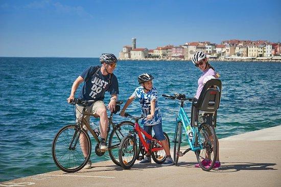 Panoramic Parenzana Bike Tour from Koper
