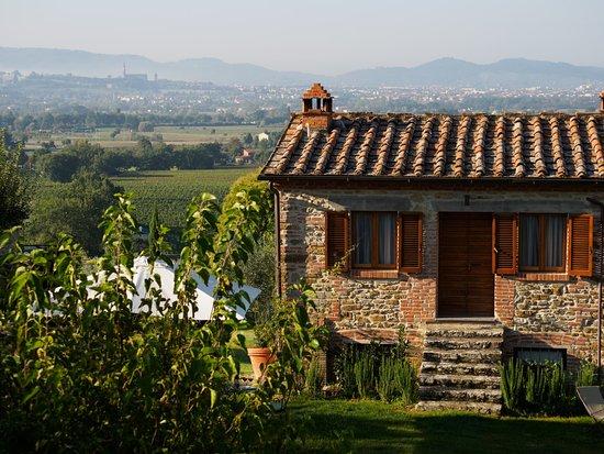 Bilder von Tenuta Il Palazzo – Fotos von Tregozzano