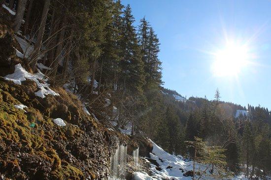 Hinterthal, Austria: Triefen Wasserfall