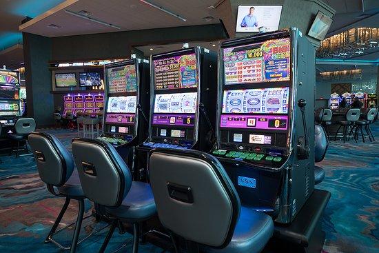 Glücksspiel rogers stiftung
