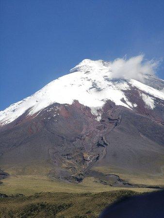 תמונה מEcuador Hop