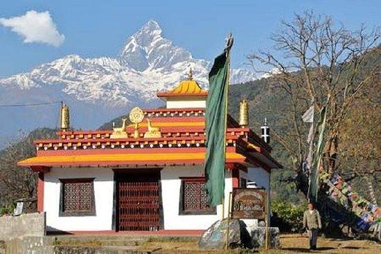 Dampus Village Trek au Népal