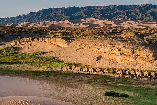 Entdecken Sie die Mongolei-Tour