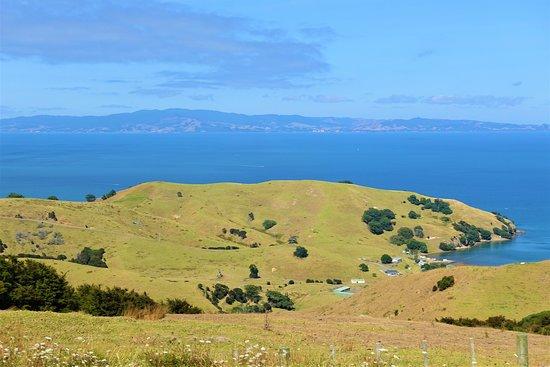 Полуостров Коромандел, Новая Зеландия: Coromandel Peninsula New Zealand