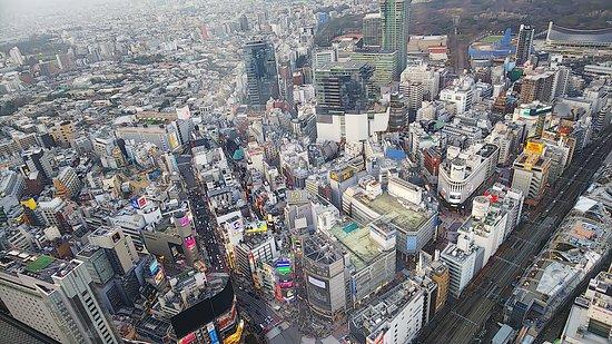 眼下に渋谷