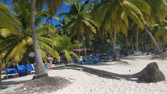 Πουέρτο Πλάτα, Δομινικανή Δημοκρατία: beach Punta cana