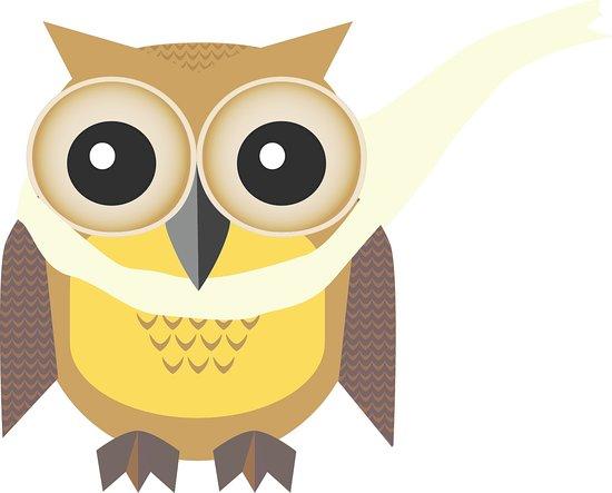 Owls Play Centre