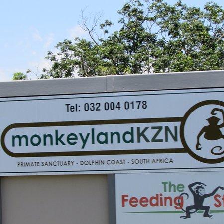 Monkeyland KZN