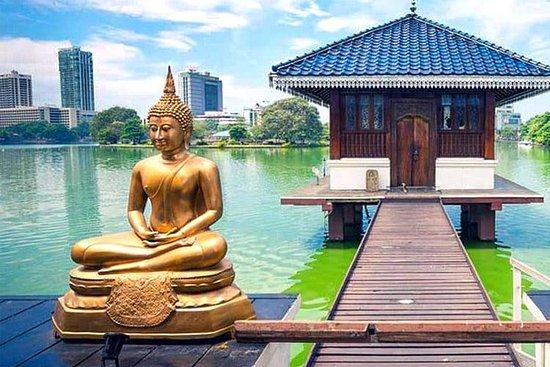 Tout compris - Visite d'une journée complète du temple à Colombo et...