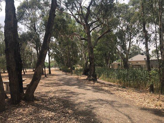 WAAF Creek Walk