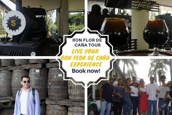 Flor de Caña Rum-Tour