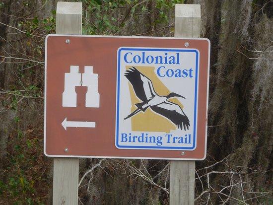 Savannah, GA: Birding Trail Signage