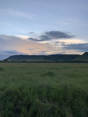 Masai Mara National Reserve, Kenya: Natur pur