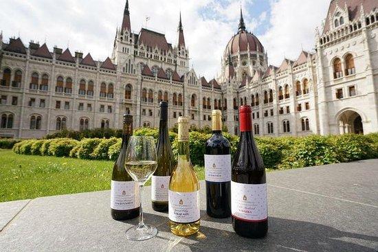 Visite guidée privée de Budapest, y compris la visite du vin Etyek...