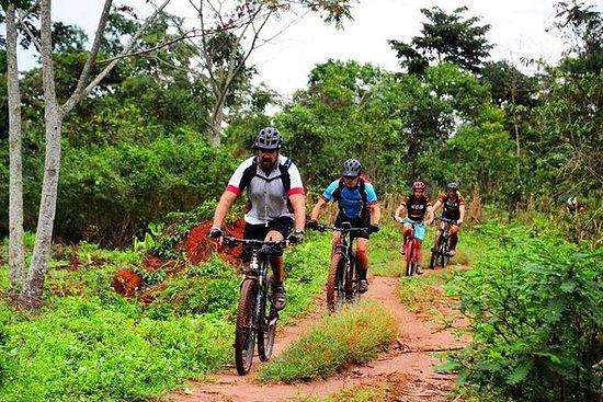 Excursion à vélo sur l'île du lac...