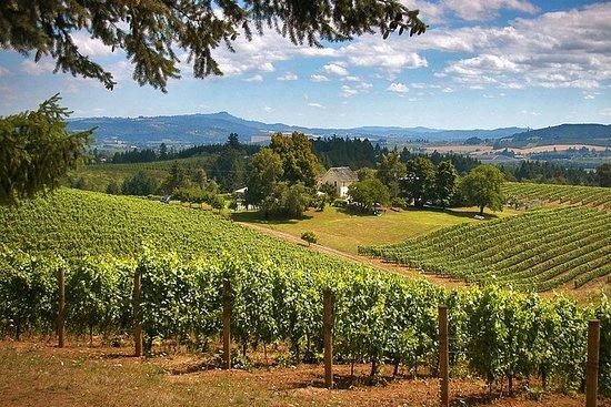 Degustazione di vini alla Willamette