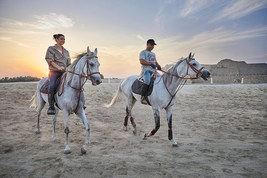 Arabian Sunset Horse Riding & Stable...