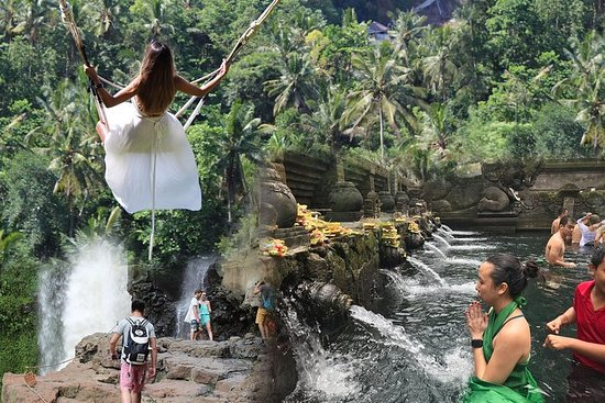 Full day Tour to Best of Ubud with...