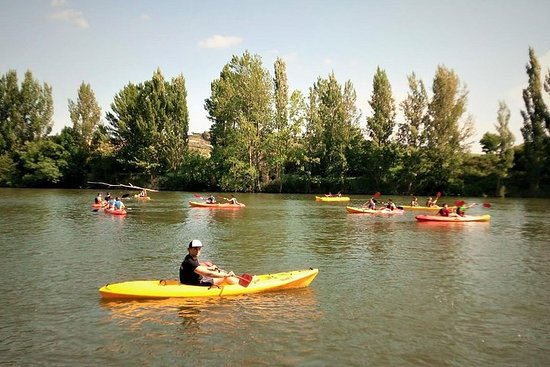 Discover Rioja paddling in the Ebro River and visiting family-run...
