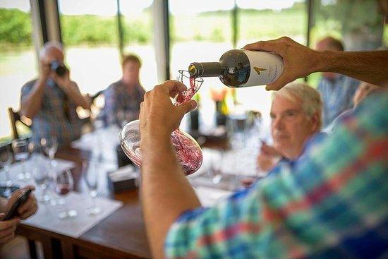 Pizzorno wijnervaring - begeleide en ...