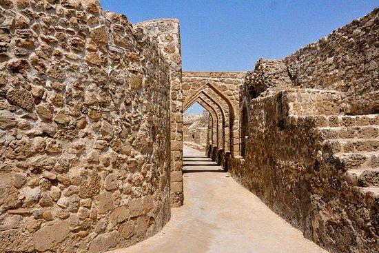 Tour archeologico del Bahrain