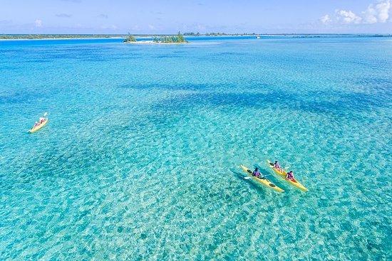 Kayak Eco Tour Photo