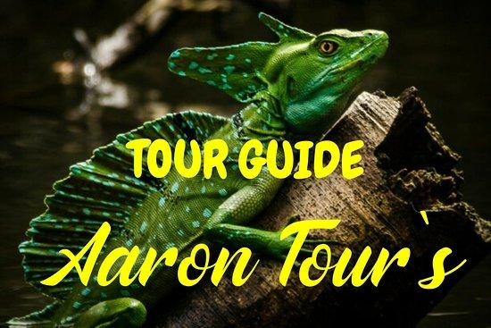 Aaron Tour's