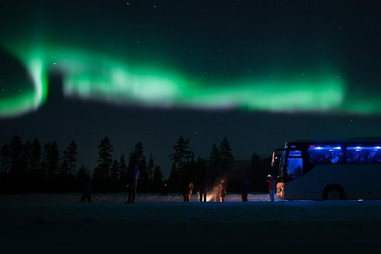 Northern Lights Chase by Bus from...