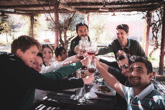 Tour delle cantine e degustazioni da Mendoza