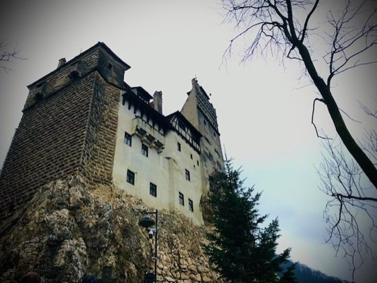 Libearty Bear Sanctuary and Bran - Dracula's Castle in One Day Tour: Bran Castle