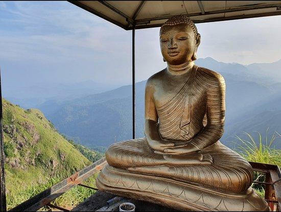 Srilanka Travel Beat Tours