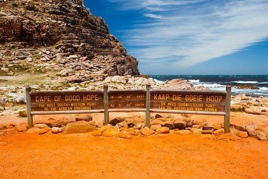 Privé Cape Point-tour van een hele dag