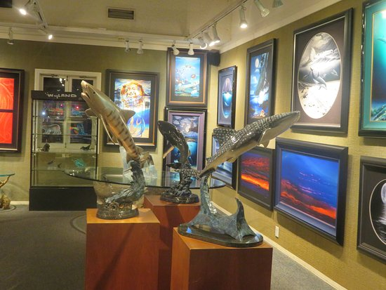 ‪Wyland Galleries‬