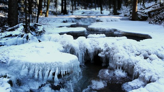 Баварский Лес, Германия: Icy Creek in Bavarian Forest National Park