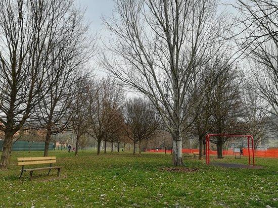 Parco Cesuola