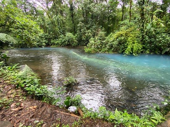 Buena Vista, Costa Rica: Start of the blue river