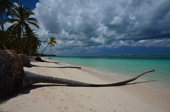 Dominikanische Republik: Wild beach