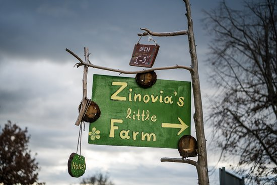Zinovia's Little Farm