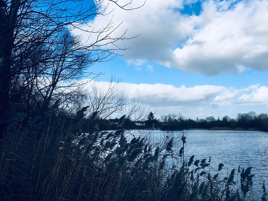 Eastbrookend Country Park