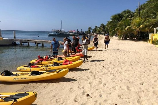 Kayak and Snorkeling Adventures in...