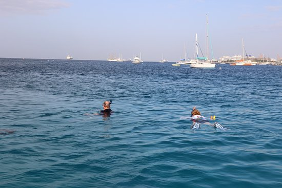 We are the only ones here snorkelling with the turtles. You will have the best interaction with the marine life as there aren't a large group of other people.