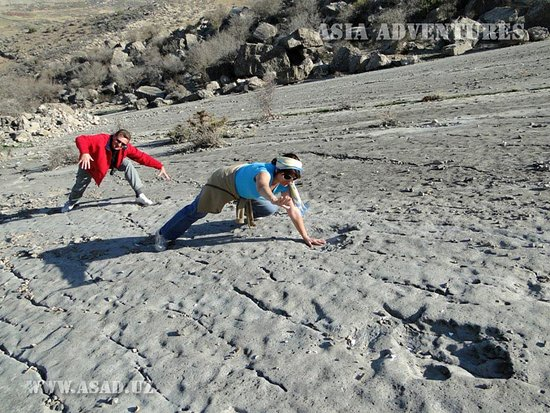 """Lebap Province, Turkmenistan: On the very east of Turkmenistan, in Kugitangtau (Koytendag) mountains, at the height of 1,500 meters, there is one of the most amazing natural attractions – the Dinosaur Plateau. Actually, it is a large limestone slab lying on a hillside, the way to which, from the small village of Khodjapil, takes a half an hour. The world first learned of this place in 1980, which soon acquired a reputation of the greatest """"repository""""of dinosaur footprints."""