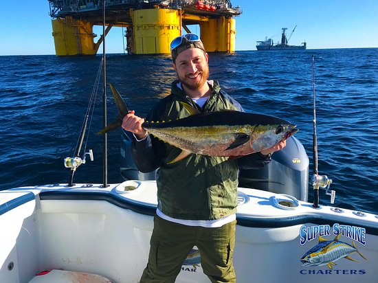 The Schmitt crew was able to catch some absolutely beautiful yellowfin tuna on February 2nd with Capt. William Bradford! Take a look at how gorgeous they are!  If you're interested in booking a trip with us, give us a call at (985) 640-0772 or visit our website www.superstrikecharters.com!