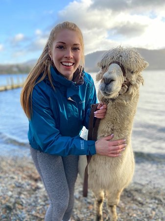 Foto de Alpacaly Ever After
