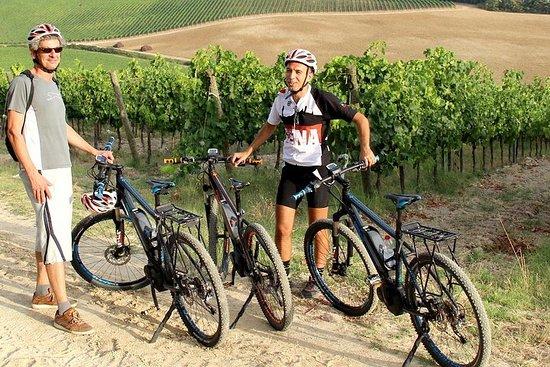 E-bike-excursie voor kleine groepen vanuit Siena met wijnproeverij en ...