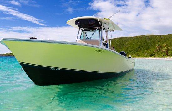 Caribbean Alibi Boat Charters