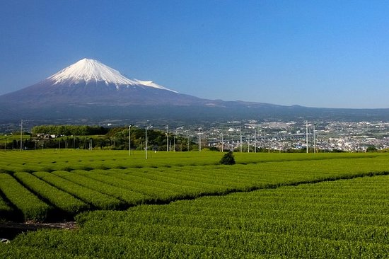 La oss glede oss over Fujinomiya på forsiden av fjellet Fuji med...