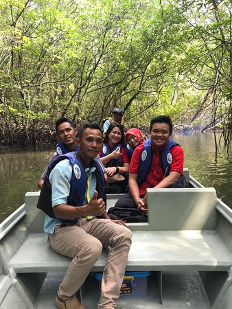 fun travel in the mangrove forest