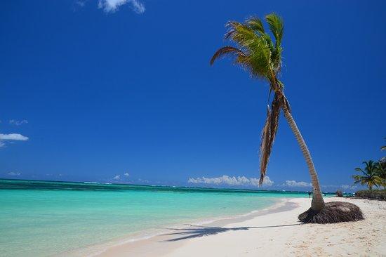 Dominikanische Republik: Solitaire